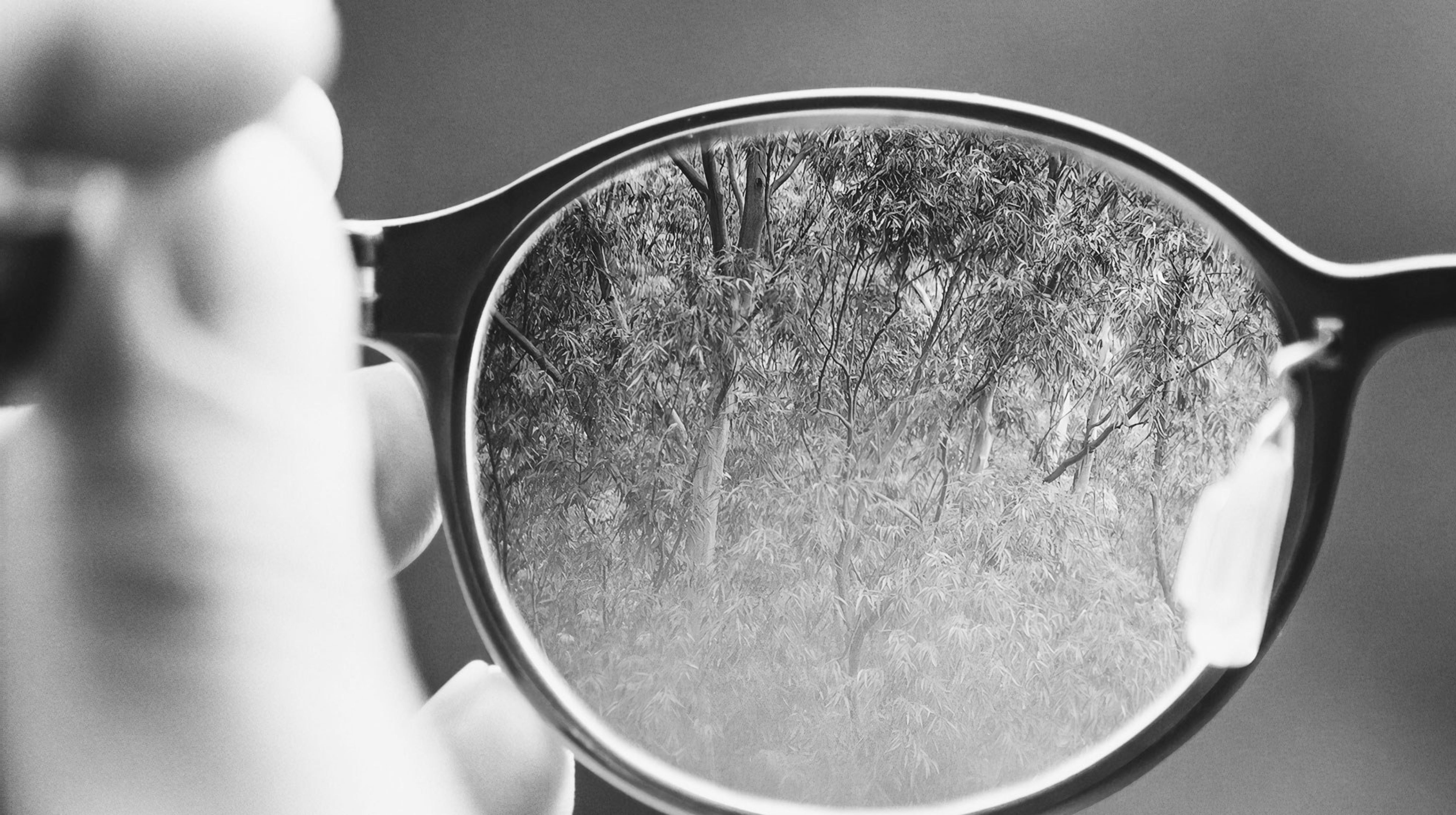 Black and white image of eye glasses focusing on trees